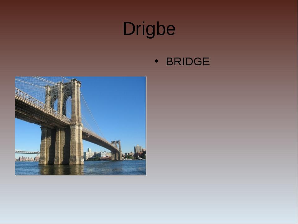 Drigbe BRIDGE