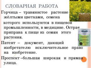 СЛОВАРНАЯ РАБОТА Горчица – травянистое растение с жёлтыми цветками, семена ко