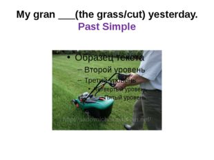 My gran ___(the grass/cut) yesterday. Past Simple