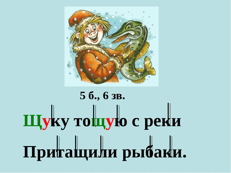 Щуку тощую с реки Притащили рыбаки. 5 б., 6 зв.
