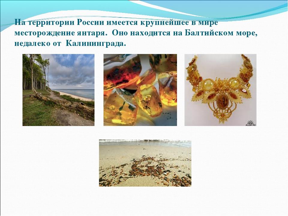 На территории России имеется крупнейшее в мире месторождение янтаря. Оно нахо...