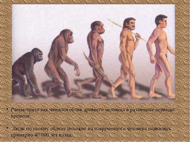 Рассмотрите как менялся облик древнего человека в различные периоды времени....