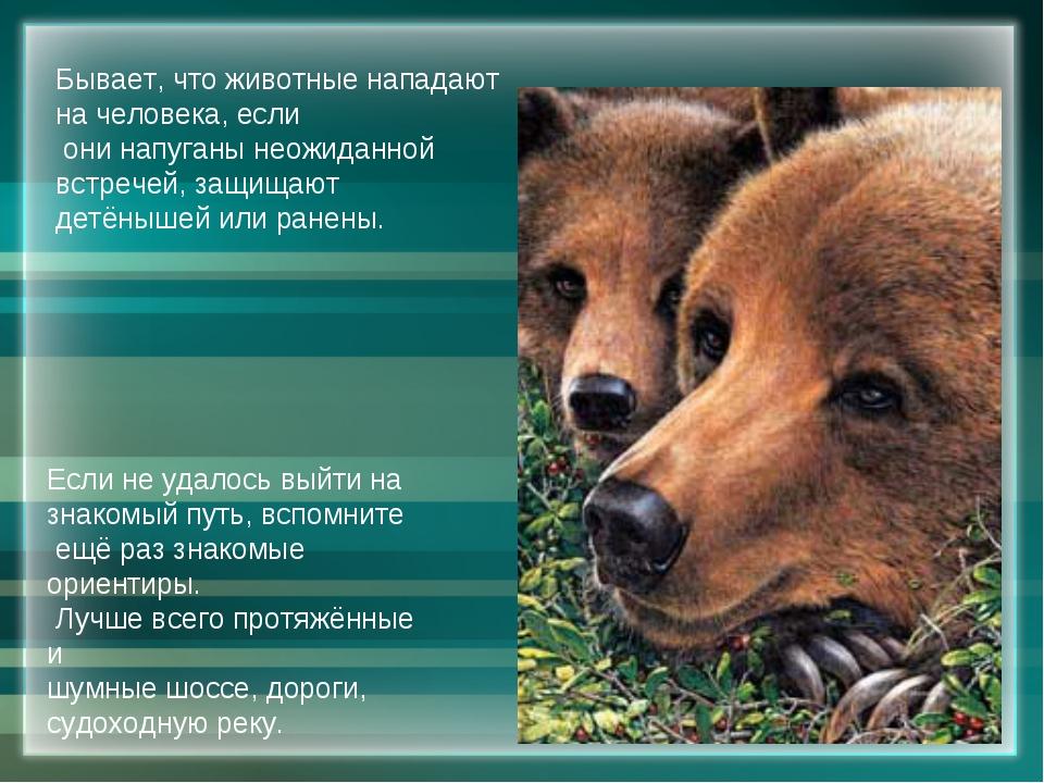Бывает, что животные нападают на человека, если они напуганы неожиданной встр...