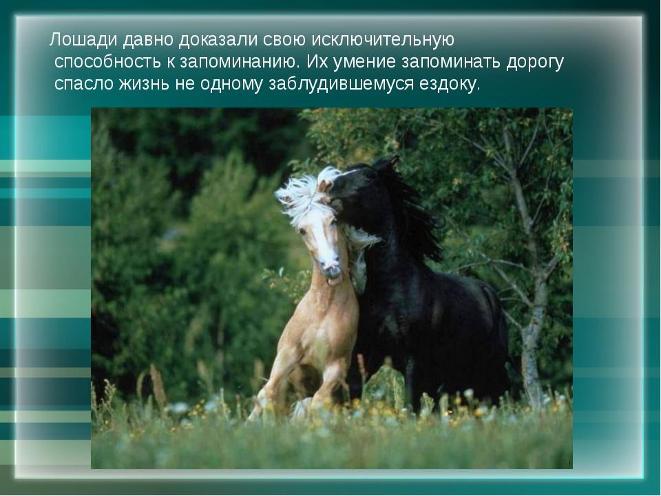 Лошади давно доказали свою исключительную способность к запоминанию. Их умени...
