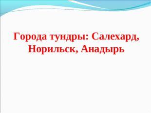 Города тундры: Салехард, Норильск, Анадырь