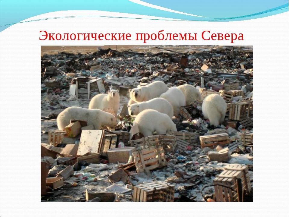 Экологические проблемы Севера
