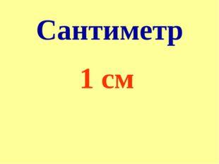 Сантиметр 1 см