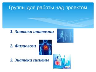 1. Знатоки анатомии 2. Физиологи 3. Знатоки гигиены Группы для работы над про