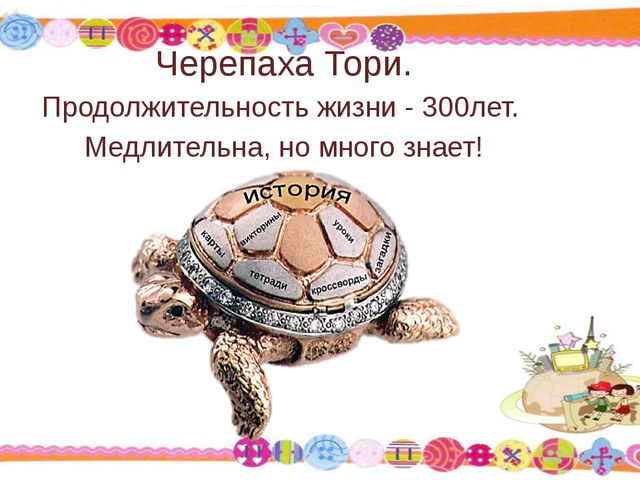 Черепаха Тори. Продолжительность жизни - 300лет. Медлительна, но много знает!