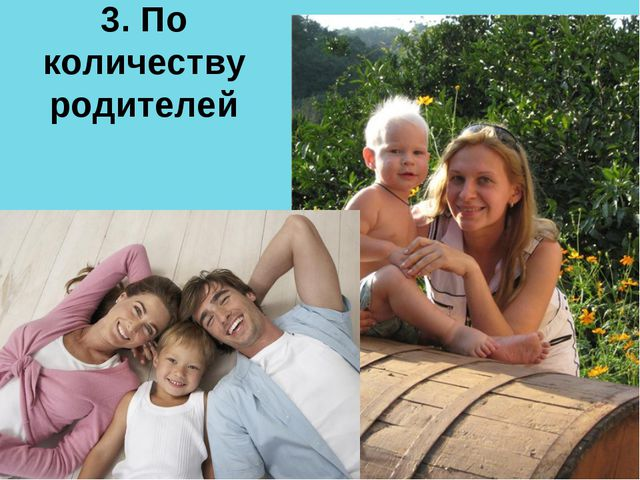 3. По количеству родителей