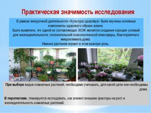 При выборе видов комнатных растений, необходимо учитывать, для какой цели они