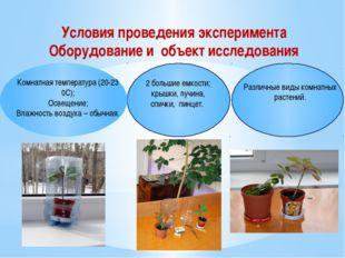 Различные виды комнатных растений. Комнатная температура (20-23 0С); Освещен