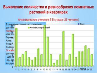 Выявление количества и разнообразия комнатных растений в квартирах В основном