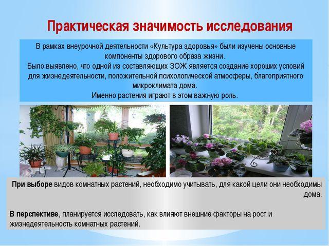 При выборе видов комнатных растений, необходимо учитывать, для какой цели они...