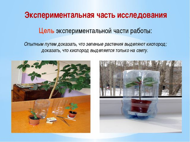 Экспериментальная часть исследования Цель экспериментальной части работы: Опы...