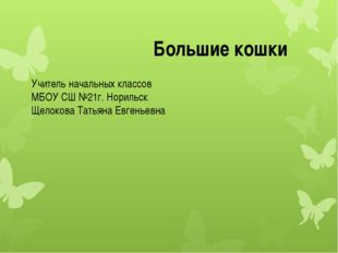 Учитель начальных классов МБОУ СШ №21г. Норильск Щелокова Татьяна Евгеньевна