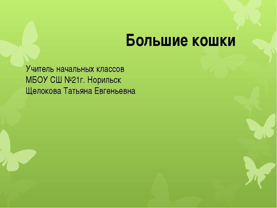 Учитель начальных классов МБОУ СШ №21г. Норильск Щелокова Татьяна Евгеньевна...