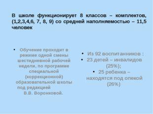 В школе функционирует 8 классов – комплектов, (1,2,3,4,6, 7, 8, 9) со средней