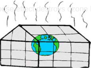 Greenhouse effect destroys ozone layer.