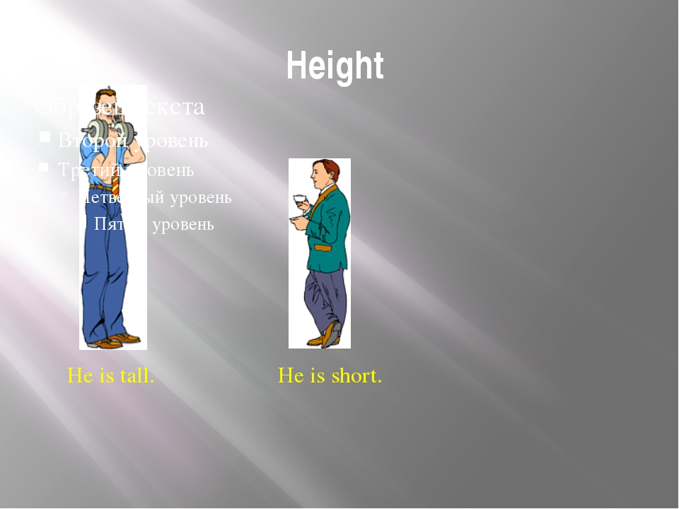 Height He is tall. He is short. Height - Is this man tall or short? - And wha...