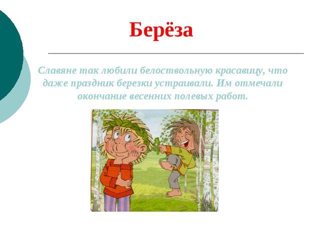 Берёза Славяне так любили белоствольную красавицу, что даже праздник березки...