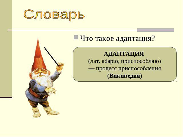 Что такое адаптация? АДАПТАЦИЯ (лат. adapto, приспособляю) — процесс приспосо...