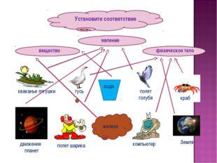 Установите соответствие вещество физическое тело явление железо вода кваканье