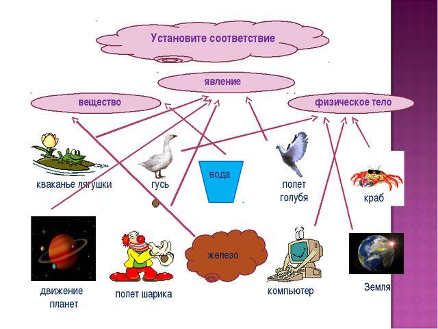 Установите соответствие вещество физическое тело явление железо вода кваканье...