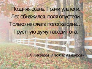 Поздняя осень. Грачи улетели, Лес обнажился, поля опустели, Только не сжата п
