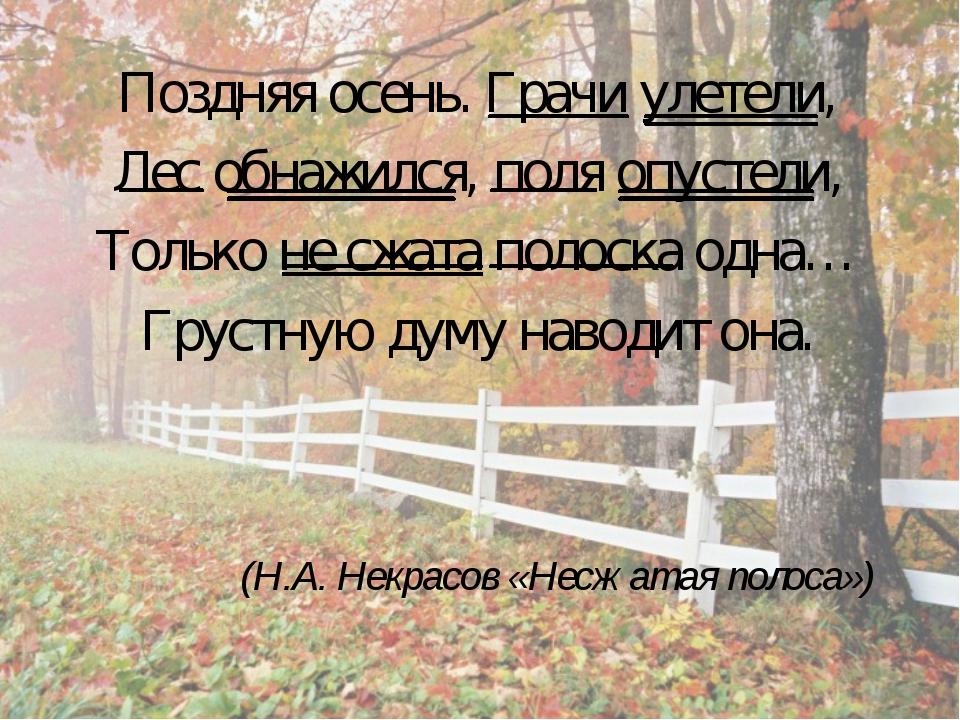 Поздняя осень. Грачи улетели, Лес обнажился, поля опустели, Только не сжата п...