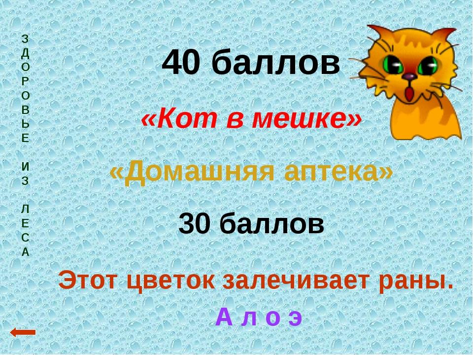 З Д О Р О В Ь Е И З Л Е С А 40 баллов «Кот в мешке» «Домашняя аптека» 30 балл...