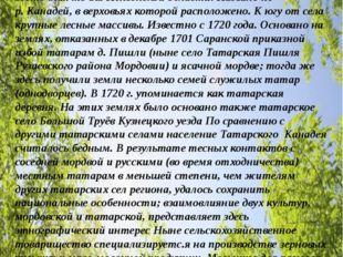 Моя малая Родина- село ТАТАРСКИЙ КАНАДЕЙ (Татарские Канадеи) Кузнецкого район