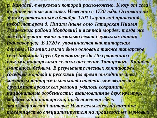 Моя малая Родина- село ТАТАРСКИЙ КАНАДЕЙ (Татарские Канадеи) Кузнецкого район...