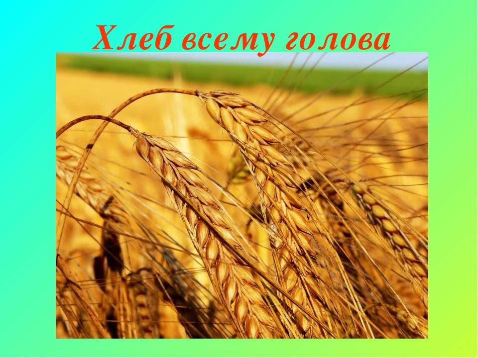 Виктора, картинки хлеб всему голова в детском саду