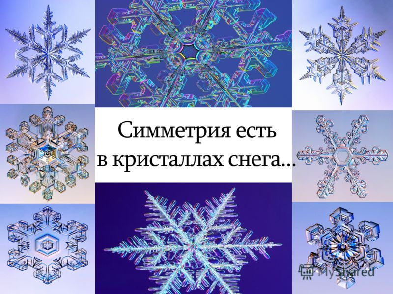 http://images.myshared.ru/4/126263/slide_2.jpg