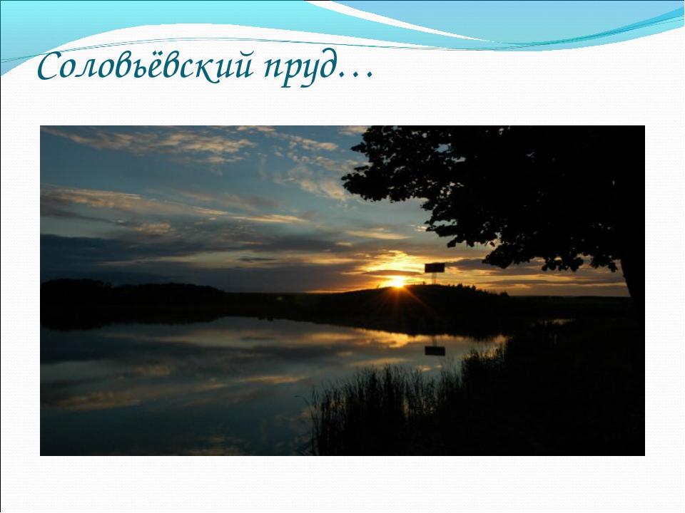Соловьёвский пруд…