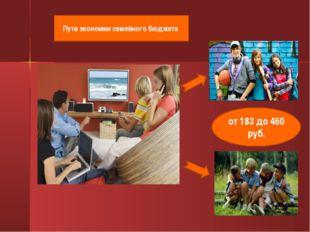 от 183 до 460 руб. Пути экономии семейного бюджета