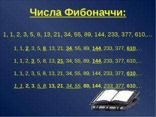 Числа Фибоначчи 1, 1, 2, 3, 5, 8, 13, 21, 34, 55, 89, 144, 233, 377, 610,… С