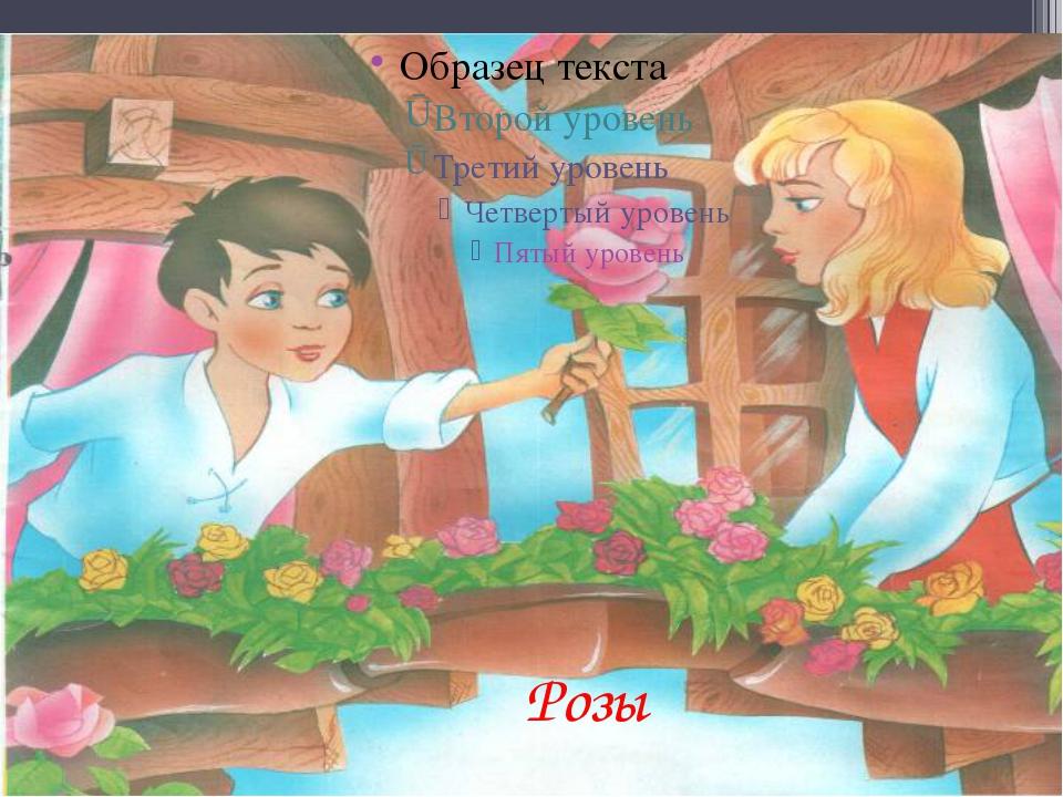 Розы Долгова Елена Павловна