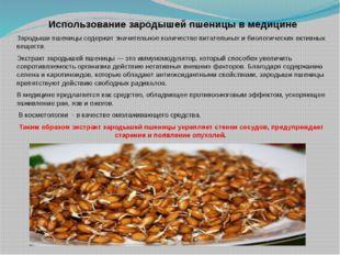 Использование зародышей пшеницы в медицине Зародыши пшеницы содержат значите