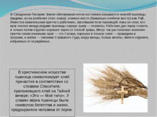 В Священном Писании Земля обетованная почти постоянно называется землёй пшени