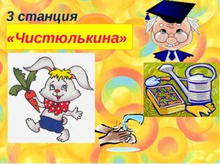 3 станция «Чистюлькина»
