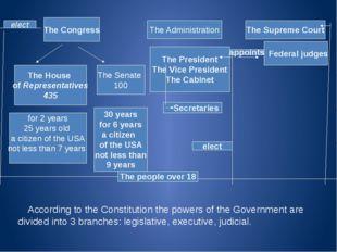 The Congress The House of Representatives 435 The Senate 100 The Administrati