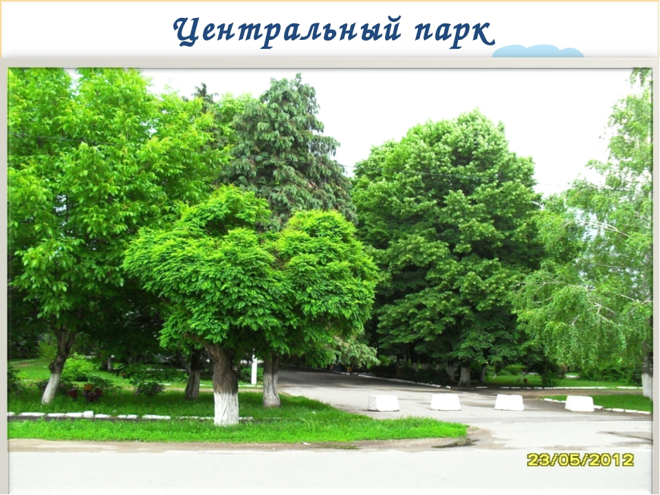 Центральный парк * Signature of Teacher Signature of Teacher