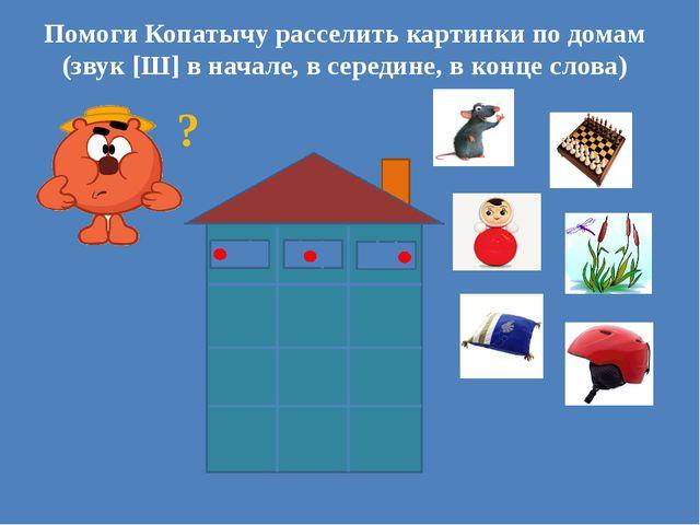 ? Помоги Копатычу расселить картинки по домам (звук [Ш] в начале, в середине...