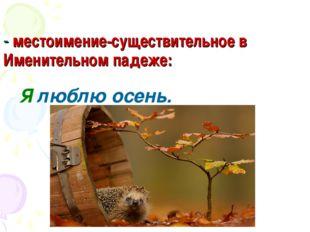 - местоимение-существительное в Именительном падеже: Я люблю осень.