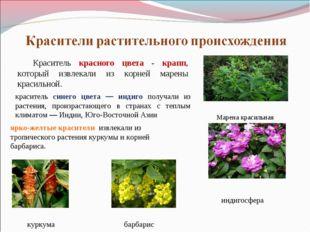 Краситель красного цвета - крапп, который извлекали из корней марены красильн