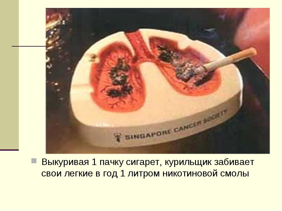 Выкуривая 1 пачку сигарет, курильщик забивает свои легкие в год 1 литром нико...