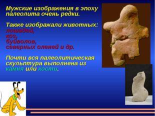 Мужские изображения в эпоху палеолита очень редки. Также изображали животных: