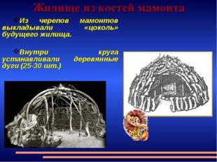 Жилище из костей мамонта Из черепов мамонтов выкладывали «цоколь» будущего жи